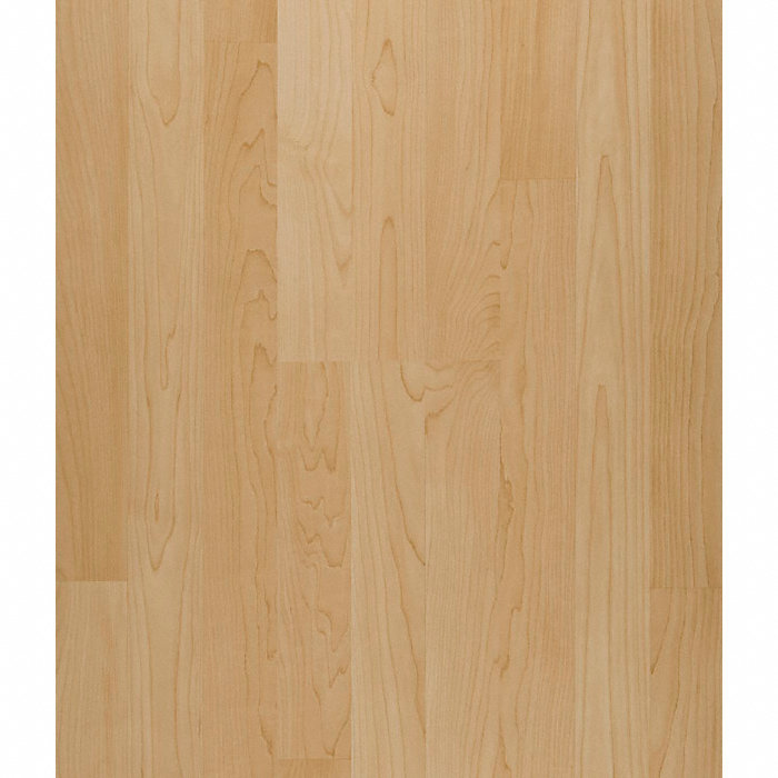 8mm Honey Maple Laminate Major Brand Lumber Liquidators