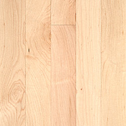 3/4 x 2-1/4 Select Maple Solid Hardwood Flooring