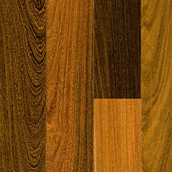3/4 x 3-1/4 Brazilian Walnut Solid Hardwood Flooring