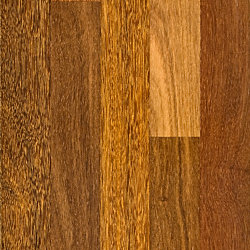 3/4 x 3-1/4 Select Brazilian Chestnut