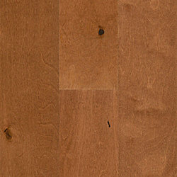 3/8 x 5-1/2 Palomino Birch Engineered Hardwood Flooring