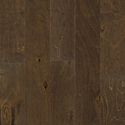 3/8 x 5-1/2 Stallion Birch Engineered Hardwood Flooring