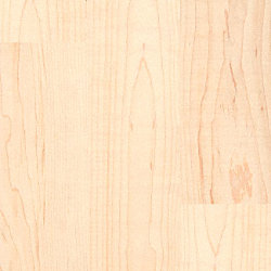 3/4 x 2 1/4 Select Maple Unfinished Solid Hardwood Flooring