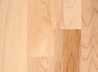 R.L. Colston Maple Unfinished Solid Hardwood Flooring, 3/4 x 3-1/4, $3.49/sqft, Lumber Liquidators Sale $3.49 SKU: 10008028 :