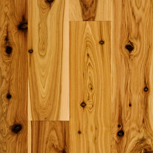 X Australian Cypress Engineered Schön Engineered - Australian cypress hardwood flooring reviews