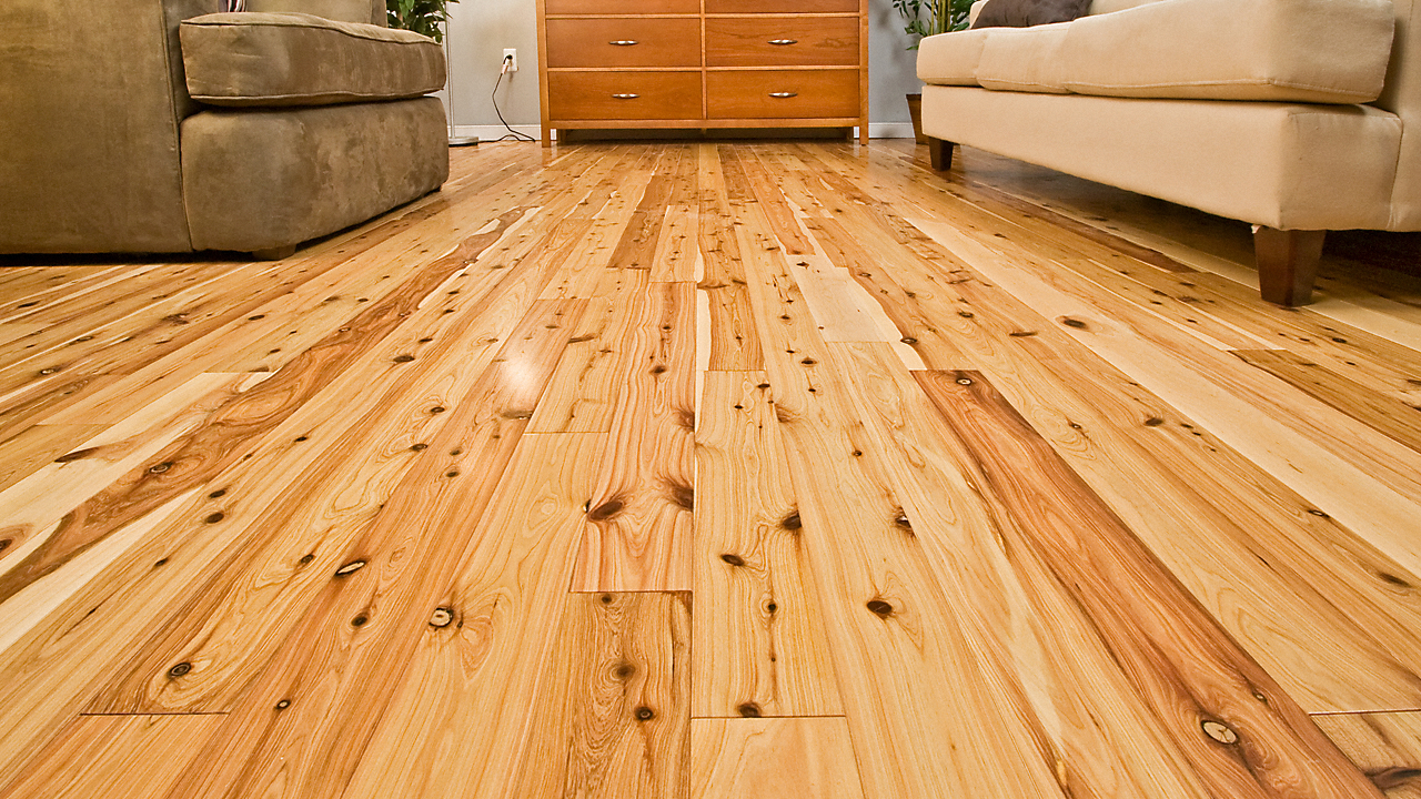 australian cypress hardwood flooring reviews gurus floor