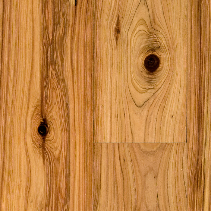 3 4 x 5 1 4 natural australian cypress bellawood for Bella hardwood flooring prices