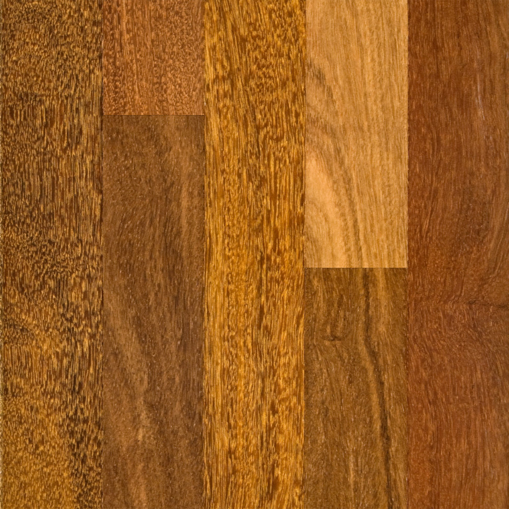 Brazilian ebony hardwood flooring - 3 4 X 3 1 4 Select Brazilian Chestnut