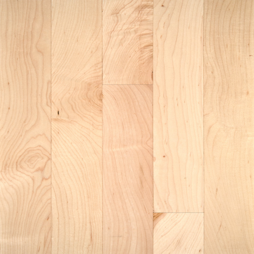 3 4 X 3 1 4 Select Maple Bellawood Lumber Liquidators